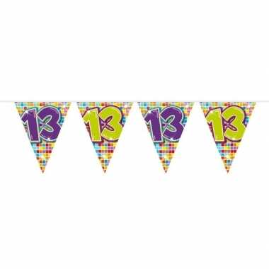 1x mini vlaggenlijn feestversiering met leeftijd 13