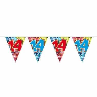 1x mini vlaggenlijn feestversiering met leeftijd 14