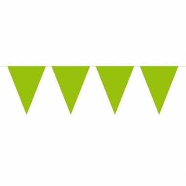 1x mini vlaggenlijn versiering lime groen 300 cm