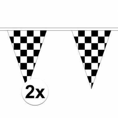 2x finish versiering vlaggenlijnen van 5 m