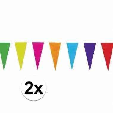 2x gekleurde uni vlaggenlijn 10 meter