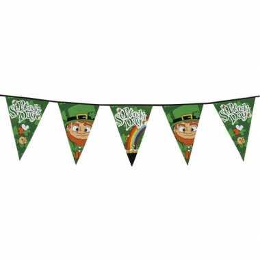 2x groene ierse thema vlaggenlijn 8 meter
