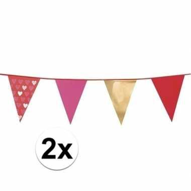 2x love vlaggenlijn met hartjes 6 meter