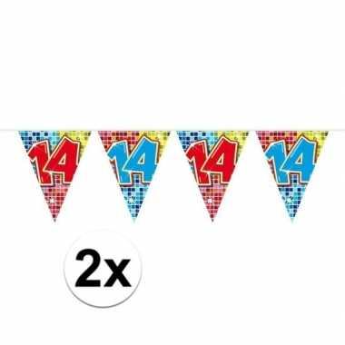 2x mini vlaggenlijn feestversiering met leeftijd 14