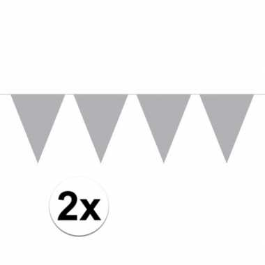 2x mini vlaggenlijn versiering zilver 300 cm