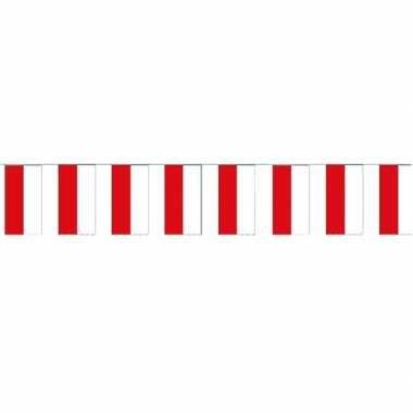 2x papieren vlaggenlijnen polen