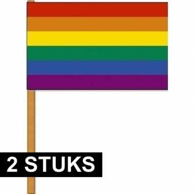 2x regenbogen zwaaivlaggen/handvlaggen 30 x 45 cm polyester