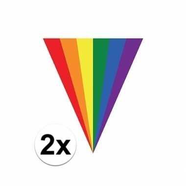 2x regenboog vlag vlaggenlijnen 5 meter