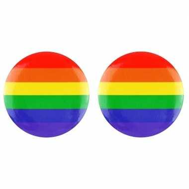2x regenboogvlag kleuren tas broche 2 cm