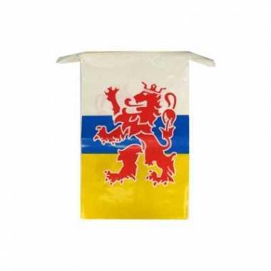 2x stuks limburgse vlaggenlijnen van 10 meter