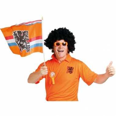 2x stuks oranje zwaaivlag holland met leeuw