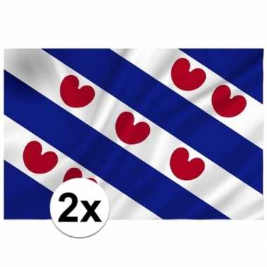 2x vlag van friesland