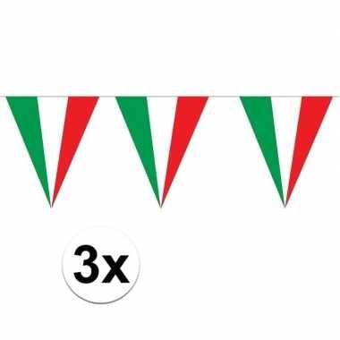 3 stuks italiaanse vlaggenlijnen 5 meter