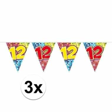 3x mini vlaggenlijn feestversiering met leeftijd 12
