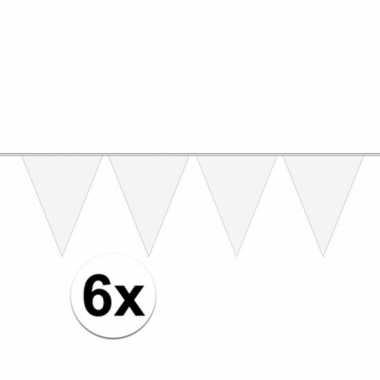 6x 10 meter lange witte vlaggenlijn