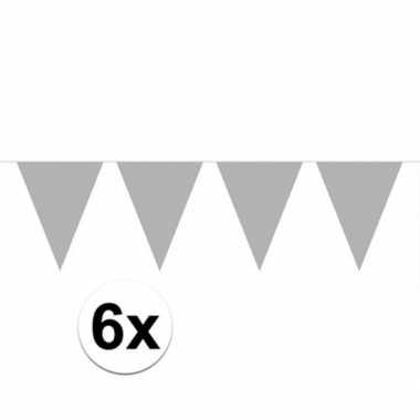 6x zilveren vlaggenlijnen 10 meter