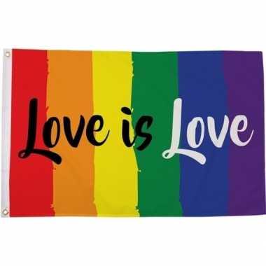 Feestartikelen amsterdam pride vlag 90 x 150 cm love is love regenboo