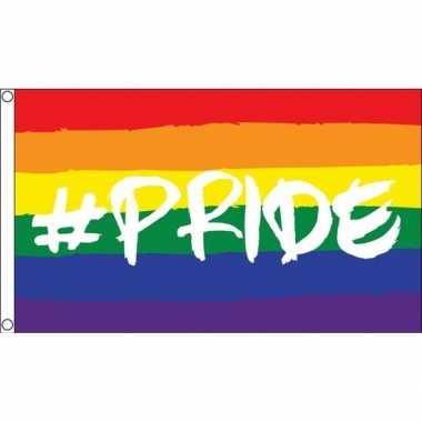 Feestartikelen amsterdam pride vlag 90 x 150 cm regenboog strepen
