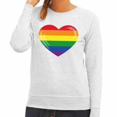 Gay pride regenboog hart sweater grijs voor dames