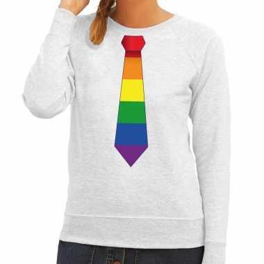 Gay pride regenboog stropdas sweater grijs voor dames
