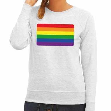 Gay pride regenboog vlag sweater grijs voor dames
