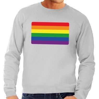 Gay pride regenboog vlag sweater grijs voor heren