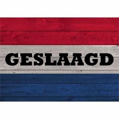 Geslaagd poster van de nederlandse vlag op hout 84 cm