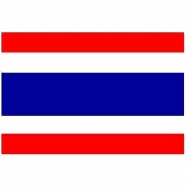Kleine vlag van thailand 60 x 90 cm