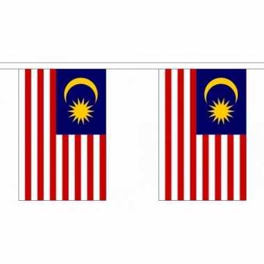 Maleisie vlaggenlijnen