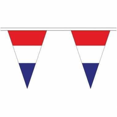 Nederlandse landen versiering vlaggetjes 20 meter