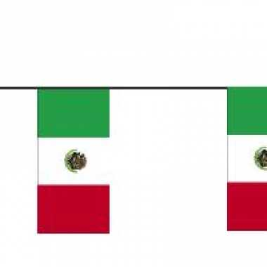 Papieren vlaggenlijnen mexico