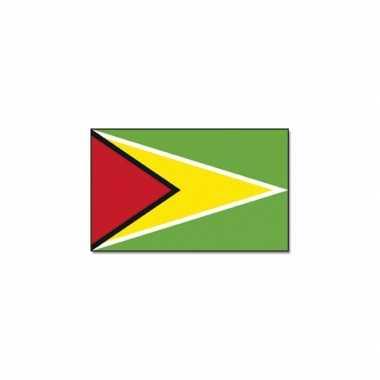 Polyester vlag guyana
