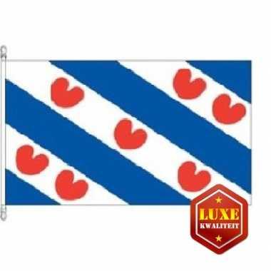 Provincievlag friesland hoge kwaliteit