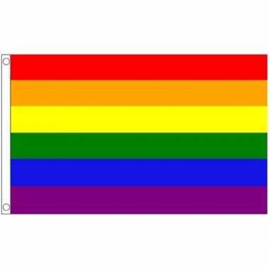 Regenboog nylon lgbt vlaggen 89 x 148 cm