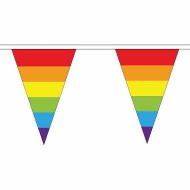 Set van 3x stuks polyester vlaggenlijnen regenboog vlaggetjes