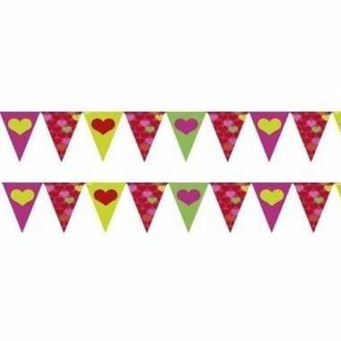 Valentijn - 2x gekleurde hartjes vlaggenlijnen van 4 meter per stuk