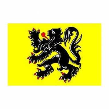 Vlaanderen vlag 90 x 150 cm officieel