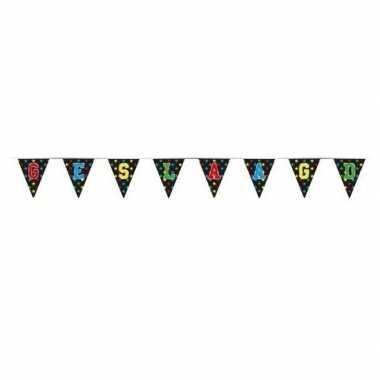 Vlaggenlijnen geslaagd thema feestartikelen 4 meter