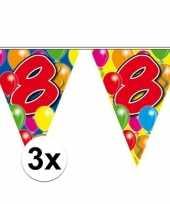 3x leeftijd vlaggenlijnen 8 jaar 10 meter