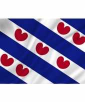 Feestartikelen friesland thema luxe vlag 70 x 100 cm stevige kwaliteit