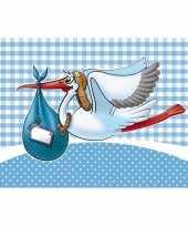 Raamvlag geboorte jongen