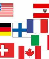 Wintersport decoratie vlaggen